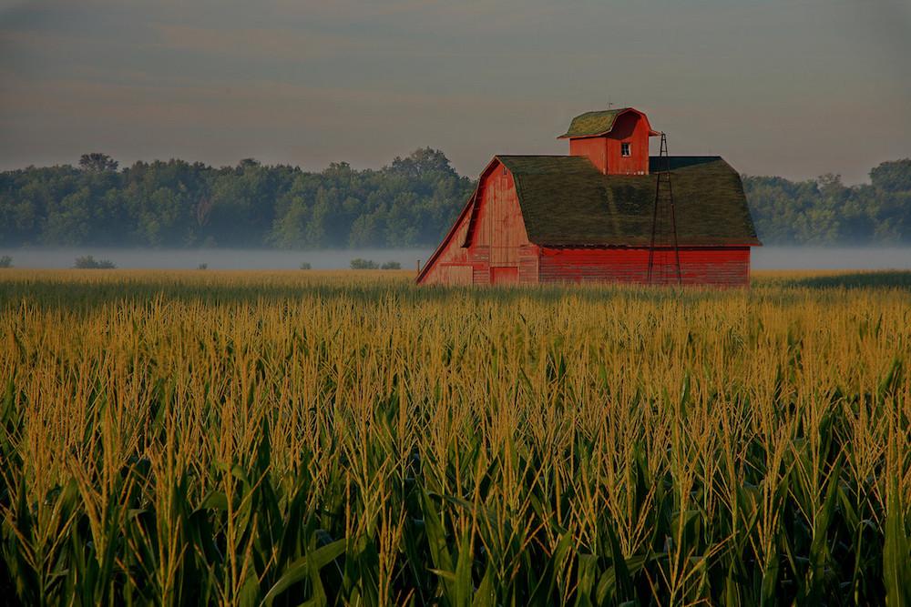 farm and crop insurance Cedar Hill TX